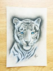 White Tiger by mmpninja