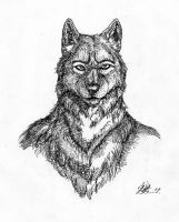 Lines and wolves by skrawl