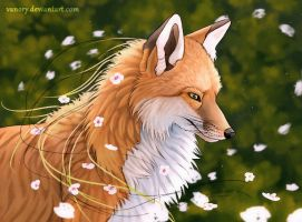 Spring Fox by Vanory