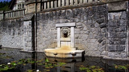 Lion Fountain At The Royal Roads Univerisity by ShonnaWhite