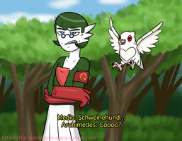 TF2/Pokemon Crossover Garde-Medic and Archi-Pidove