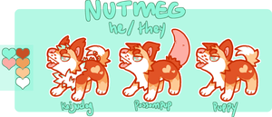 nutmeg puppy ref by flvffy
