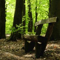 take a seat, Spring by Wilithin