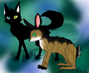 A Cat and a Rabbit by Darost