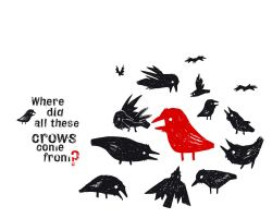 Where did all these crows come by shesasheep