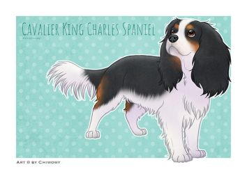 Dogbreed: Cavalier King Charles Spaniel by Chiwowy