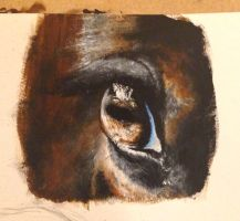 I painted a horse's eye by Teal-Blooded-Hands