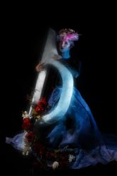 The Harp by waiting4cadence