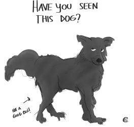 Have You Seen This Dog? by Giorgia99