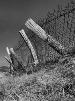 Fence by Pixelmenteur
