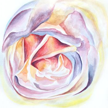 Watercolour Rose by Kyla-Nichole