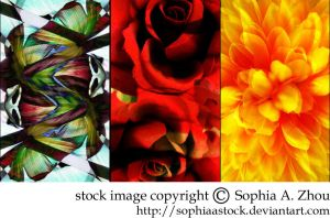 texture pack: abstract flowers by sophiaastock