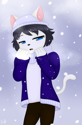 Winter by ShenyCat