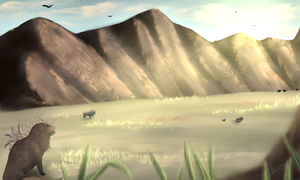 Buffalo Valley by Rimmir