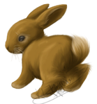 Mini Rabbit by KLFoxglove