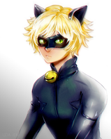 Chat Noir by LIDA-JEM