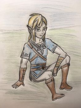 Link Breath of the Wild Sitting by CaptainEdwardTeague