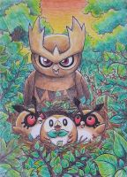 Spearow, Hoot-hoot, Noctowl and Rowlet