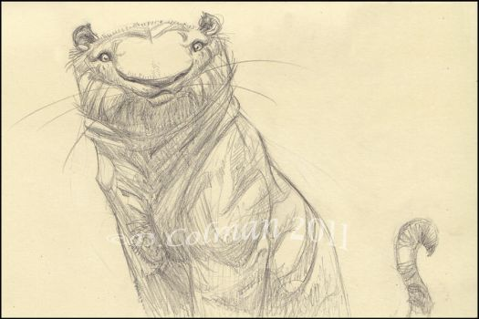 Tiger Sketch_CTN Book by davidsdoodles
