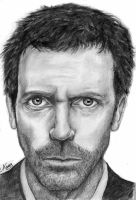 Hugh Laurie - House by archicat