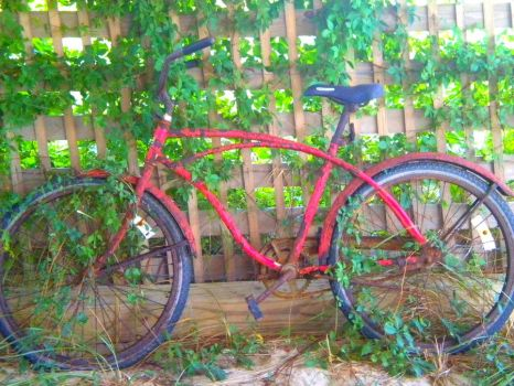 Vine-Entwined Bike, Editted by MaihacchiMonkey