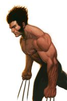 WOLVERINE WEDNESDAY - 16 by reau