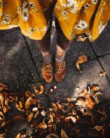 autumn in the city by Rona-Keller