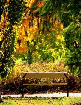 sit down and  enjoy the autumn by KariLiimatainen