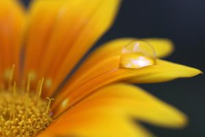 water drops 27 by yvaine2010