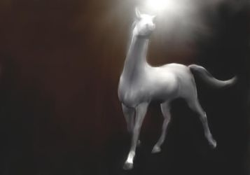 New Stock!  White horse painting unicorn by madetobeunique