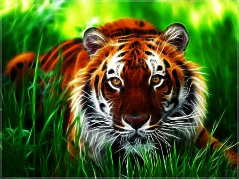 Fractal Tiger Wallpaper by PimArt