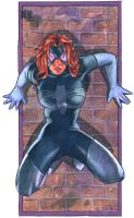 Spider Woman by ssava
