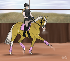 Training with Amelie by GermanSporthorseStud