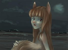 Spice and Wolf fanart by taerin