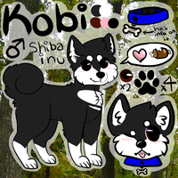 Kobi Reference by policies