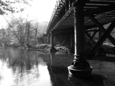 Otherside of tranquil bridge by Mystic-Photography