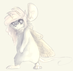Moth by nerfusia
