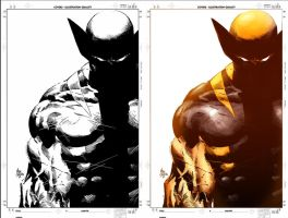 Wolverine: Origins by rapnex
