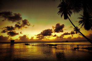 Tropical Sunset by Cryp7ic