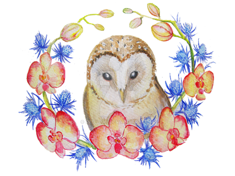 Barn Owl and Orchid by Redilion