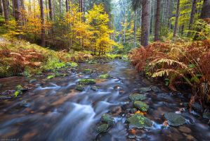 Khaa Valley Autumn by Dave-Derbis
