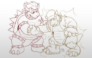 Bowser bros by LicosAragon by Drivergamer127