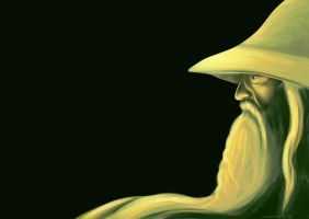 Gandalf by Vandalicus