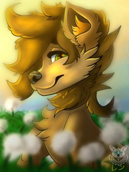 Max new OC (male) by RenWolf44