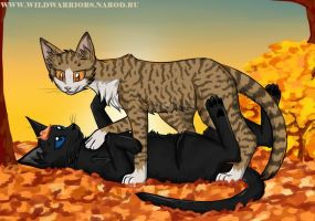 Warriors: Leafpool's Wish. Chapter 3 by Do-omed-Moon