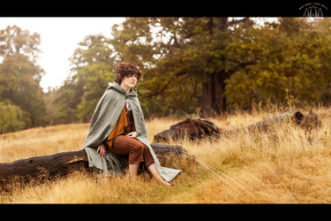 The Journey Will Not Be Easy - Lord of the Rings by faramon