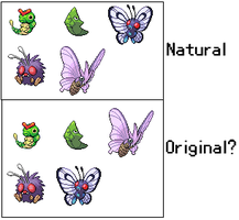 Butterfree-Venomoth Theory