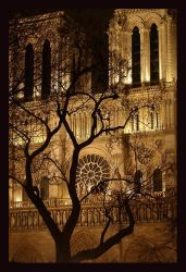 Phantom Cathedral by greenandyellow