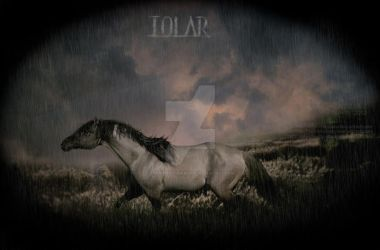 IOLAR by SnowPhotography