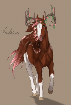 2722 Akari by NorthEast-Stables